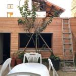 extension maison 38